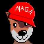 Foxy Avatar